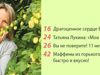 "Журнал ""Апельсин"". Сентябрь 2020"